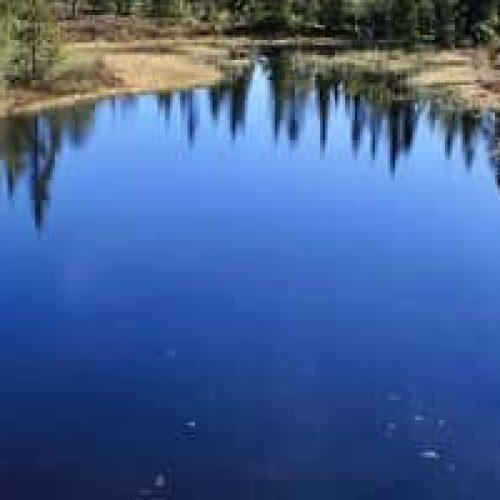 Overflatevann – er det trygt?
